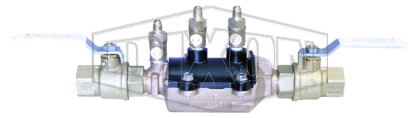 Double Check Valve with Isolation Valve