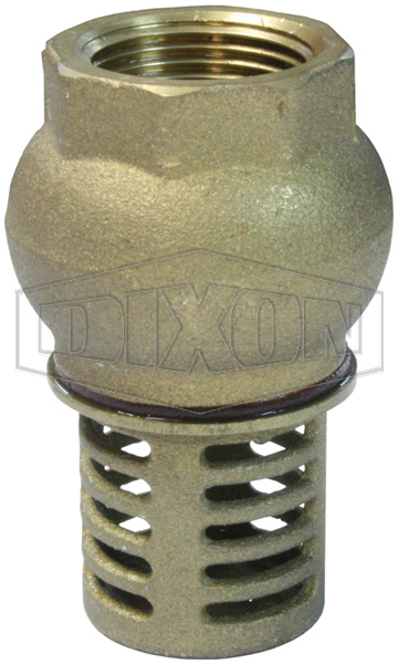 Brass Foot Valve BSP