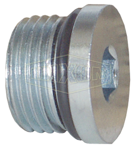 Hollow Hex O-ring Plug