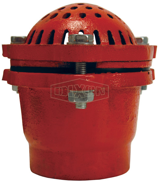 Cast Iron Threaded Foot Valve